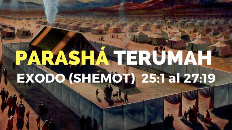 PARASHA 738x415